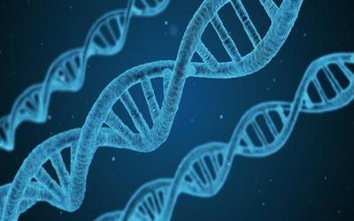 ADN genético